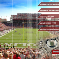 South Carolina Willilams Brice Stadium