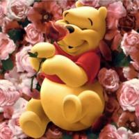 Pooh Bears in Peach Roses