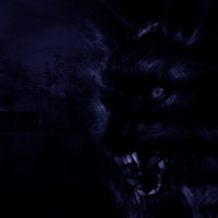 Dark Wolf in Blue & Black