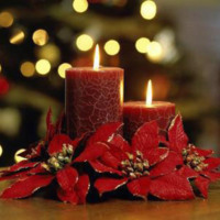 Red Candles & Poinsetta