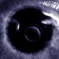 Purple Stalker Eye
