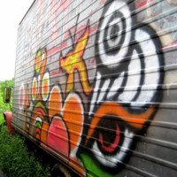 Grafetti Truck in Jungle