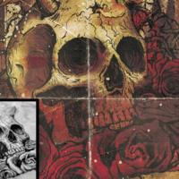 Skullz & Roses