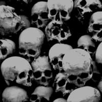 Skulls on Black