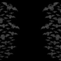 Grey Bat Silhouettes on Black