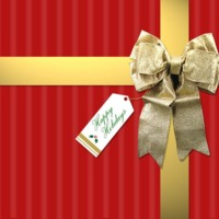 Red & Gold Christmas Package