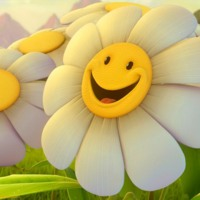 Smiley Face Daisies