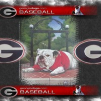 Georgia Bulldogs Baseball