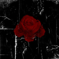 Red Gothic Roses