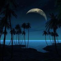 Palm Tree Island Moonset
