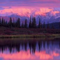 Tunagain Arm Alaska