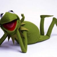 Kermit Relaxing