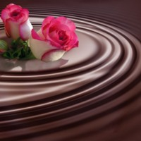 Pink & White Rosebuds