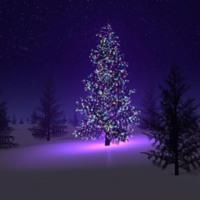 Silent Night Christmas Tree