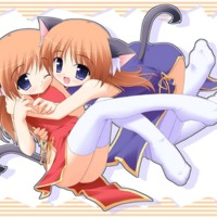Cat Girls