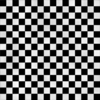 Checkers in Black & White