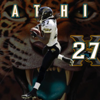 Rashean Mathis #27 Panthers