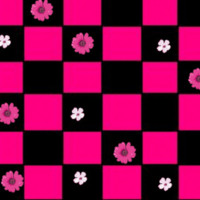 Pink & Black Checkers & Flowers