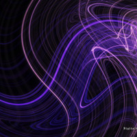 Purple Light Swirls on Black