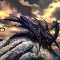 Black Dragon on Rock