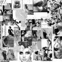 B&W Twiggy collage