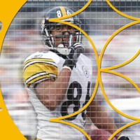 Pittsburgh Steelers Hines Ward