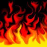 Fire pheonix