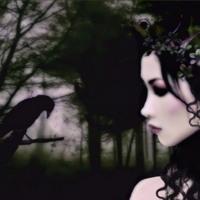 Lady Elf & Crow