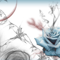 Blue Rose & Grey Smoke