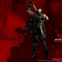 Ninja Gaiden Seek Vengeance