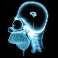 Homer Simpson's Brain Scan