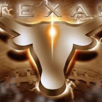 Hook Em - Texas Longhorns