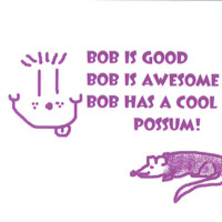 Bob Has a Pet Possum