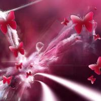Dark Pink Butterfly Burst