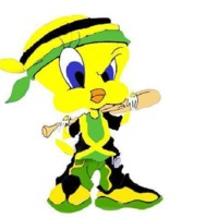 Jamaican Tweety Bird