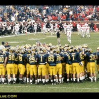 Michigan Team on Field
