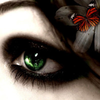 Geen Eye & Butterfly