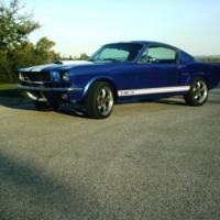 Blue 65 Mustang GT 350