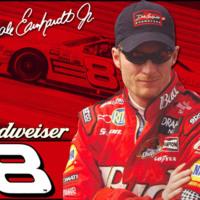 Dale Earnhardt Jr. Budweiser 8