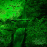Forest & Waterfall in Green