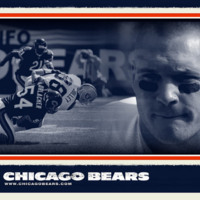 Bears football/Brian Urlacher