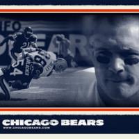 Bears football/Brian Urlacher