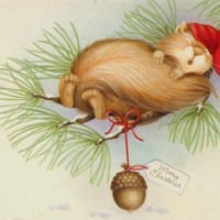 Sleepy Christmas Squirrel