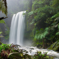 Jungle Paradise Waterfall