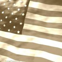 B&W American flag