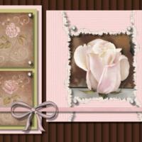 Pink Roses on Brown