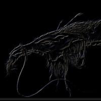 Embossed Dragon