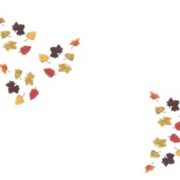 November Leaves Design