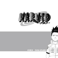 Nara Shikamaru Naruto