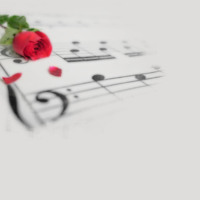 Music Notes & Red Rose